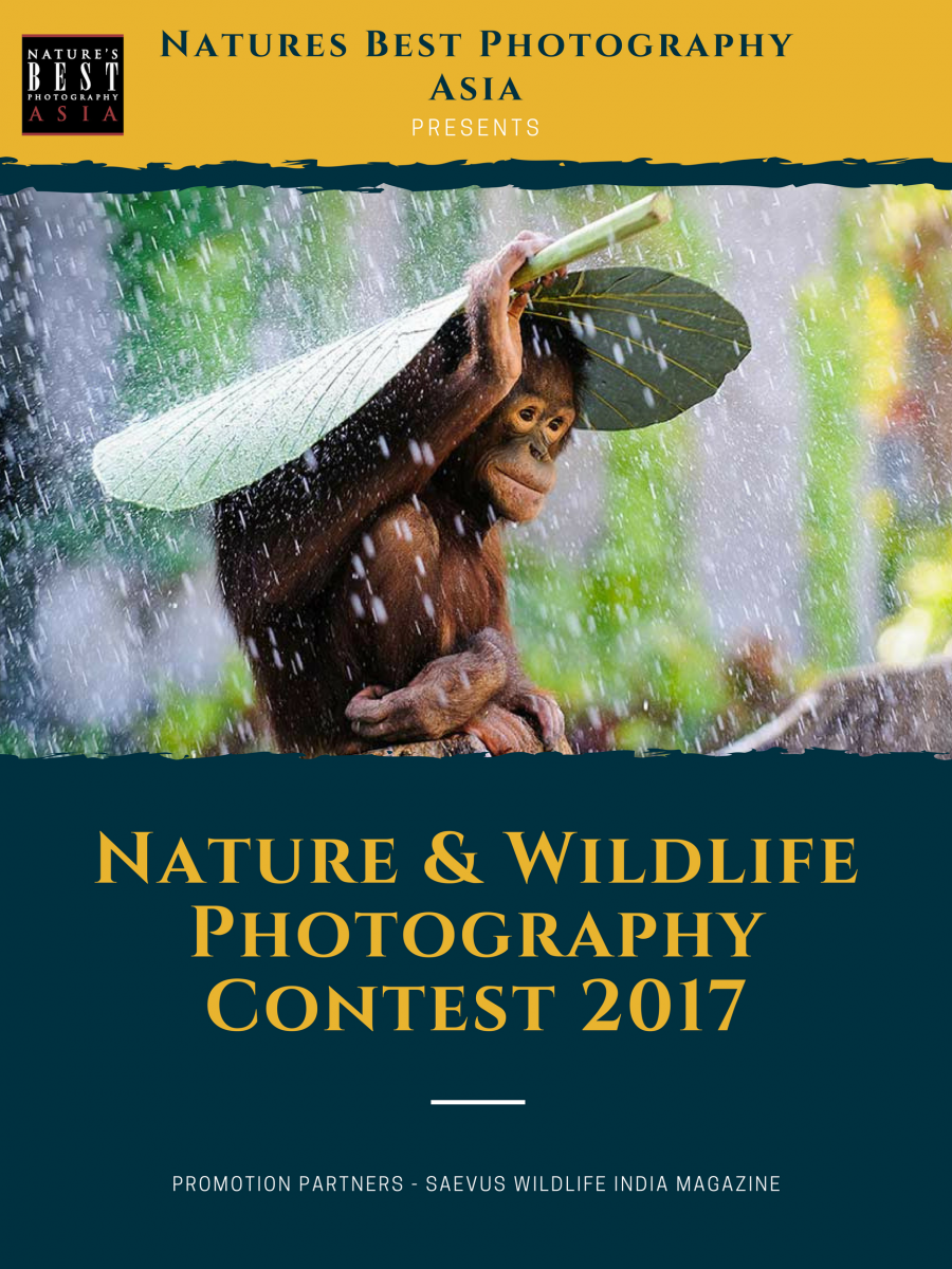 Natures Best Photography Asia Contest 2017
