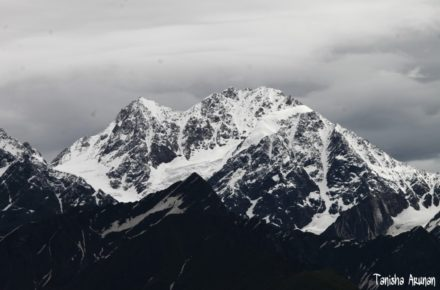 Saevus View-from-Panchganga3679-m-440x290 Magazine | Wildlife | Conservation | Photography | Travel | Natural History